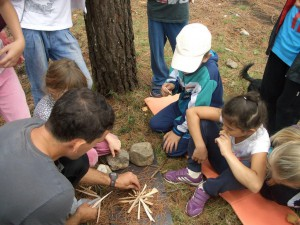 Школа «Юный натуралист»